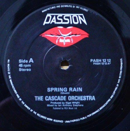 THE CASCADE ORCHESTRA / SPRING RAIN (12