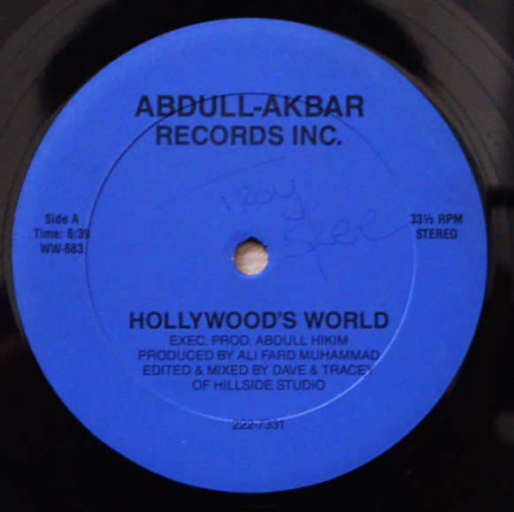 DJ HOLLYWOOD / HOLLYWOOD'S WORLD (12