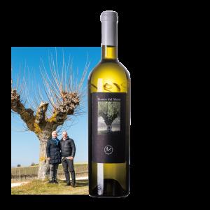 【赤葡萄で造る白ワイン!お肉料理にも!】 2017 イル・ビアンコ・デルモーロ