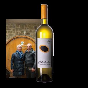 【赤葡萄メルローで造る白ワイン!希少!】 2016 メルロ・アルビノ