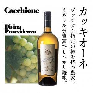 【ヴァチカン献上ワインも醸造する歴史を持つワイナリー】 2017カッキオーネ