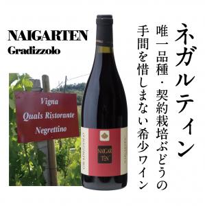【幻の葡萄品種!日本で唯一の希少ワイン!】 2015 ネガルティン 《契約栽培ブドウ》