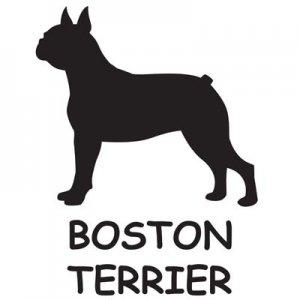 SV925シルエットチャーム ボストン・テリア