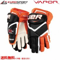 <img class='new_mark_img1' src='https://img.shop-pro.jp/img/new/icons24.gif' style='border:none;display:inline;margin:0px;padding:0px;width:auto;' />BAUER VAPOR 1X PRO グローブ シニア SR