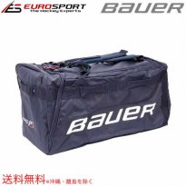 <img class='new_mark_img1' src='https://img.shop-pro.jp/img/new/icons59.gif' style='border:none;display:inline;margin:0px;padding:0px;width:auto;' />BAUER PRO15 バッグ ラージ