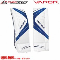<img class='new_mark_img1' src='https://img.shop-pro.jp/img/new/icons24.gif' style='border:none;display:inline;margin:0px;padding:0px;width:auto;' />BAUER VAPOR X900 レッグパッド シニア SR