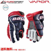 <img class='new_mark_img1' src='https://img.shop-pro.jp/img/new/icons24.gif' style='border:none;display:inline;margin:0px;padding:0px;width:auto;' />BAUER S18 VAPOR 1X LITE グローブ シニア SR