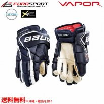 <img class='new_mark_img1' src='https://img.shop-pro.jp/img/new/icons24.gif' style='border:none;display:inline;margin:0px;padding:0px;width:auto;' />BAUER S18 VAPOR 1X LITE PRO グローブ シニア SR