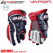 <img class='new_mark_img1' src='https://img.shop-pro.jp/img/new/icons24.gif' style='border:none;display:inline;margin:0px;padding:0px;width:auto;' />BAUER S18 VAPOR 1X LITE グローブ ジュニア JR