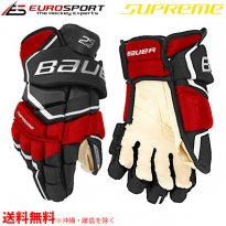 <img class='new_mark_img1' src='https://img.shop-pro.jp/img/new/icons29.gif' style='border:none;display:inline;margin:0px;padding:0px;width:auto;' />BAUER S19 SUPREME 2S PRO グローブ シニア SR