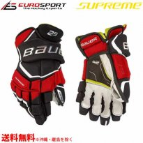 <img class='new_mark_img1' src='https://img.shop-pro.jp/img/new/icons15.gif' style='border:none;display:inline;margin:0px;padding:0px;width:auto;' />BAUER S19 SUPREME 2S グローブ ジュニア JR