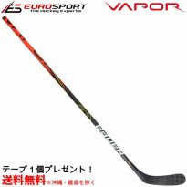 <img class='new_mark_img1' src='https://img.shop-pro.jp/img/new/icons24.gif' style='border:none;display:inline;margin:0px;padding:0px;width:auto;' />BAUER S19 VAPOR FLYLITE スティック シニア SR