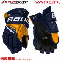 <img class='new_mark_img1' src='https://img.shop-pro.jp/img/new/icons5.gif' style='border:none;display:inline;margin:0px;padding:0px;width:auto;' />BAUER S20 VAPOR 2X PRO グローブ シニア SR