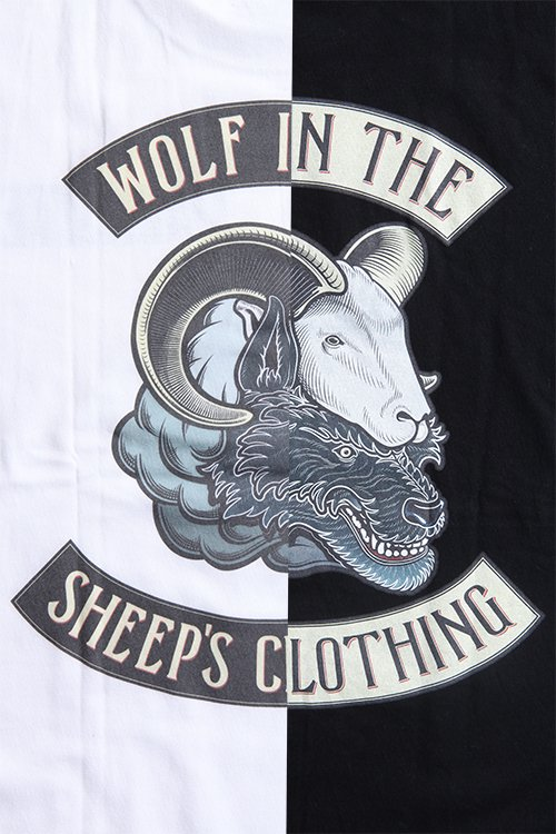 WOLF IN THE SEEP'S CLOTHING写真その4