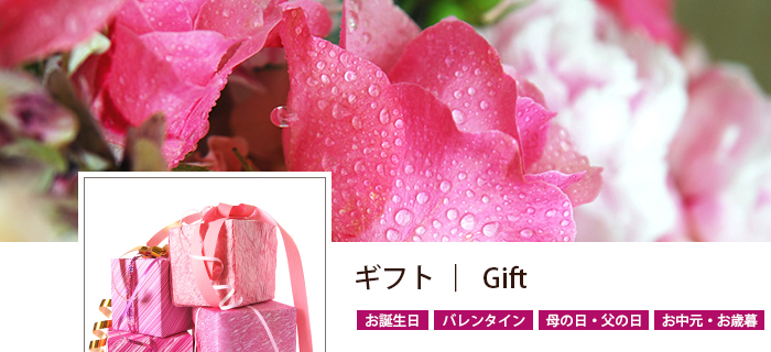 category_gift