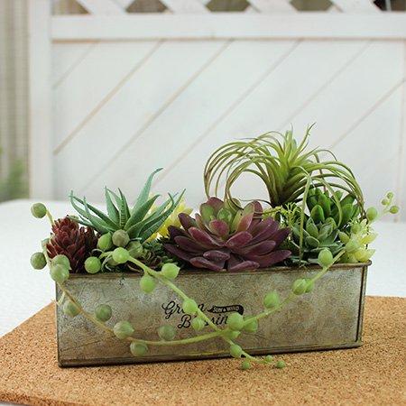 多肉植物のアレンジメント◇箱型:アーティフィシャルフラワー