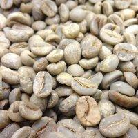 【販売終了】 ミャンマー産 コーヒー生豆