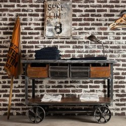 <img class='new_mark_img1' src='https://img.shop-pro.jp/img/new/icons47.gif' style='border:none;display:inline;margin:0px;padding:0px;width:auto;' />WOODEN TROLLEY WAGON
