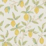 ウィリアムモリスMORRIS&Co. 20021102 Lemon Tree 216672