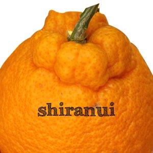 shiranui