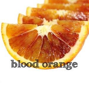 blood orange タロッコ訳あり5kg 送料無料