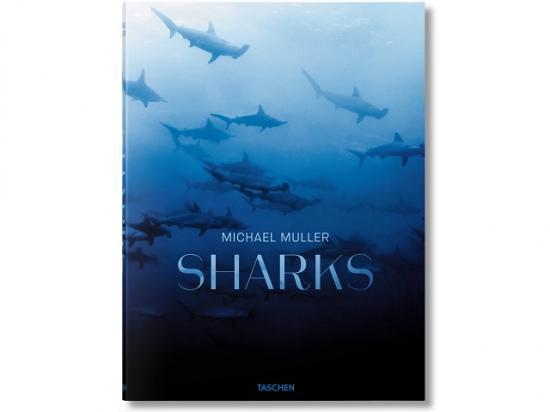 サメの写真集