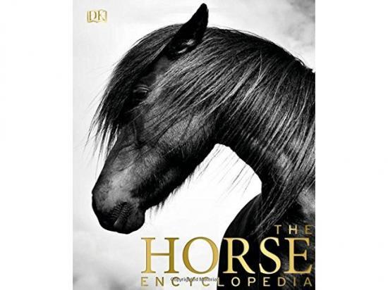 馬の写真集