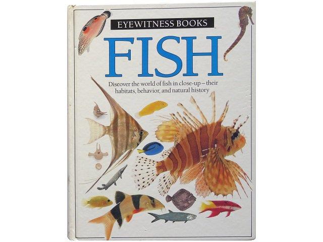 魚の写真集