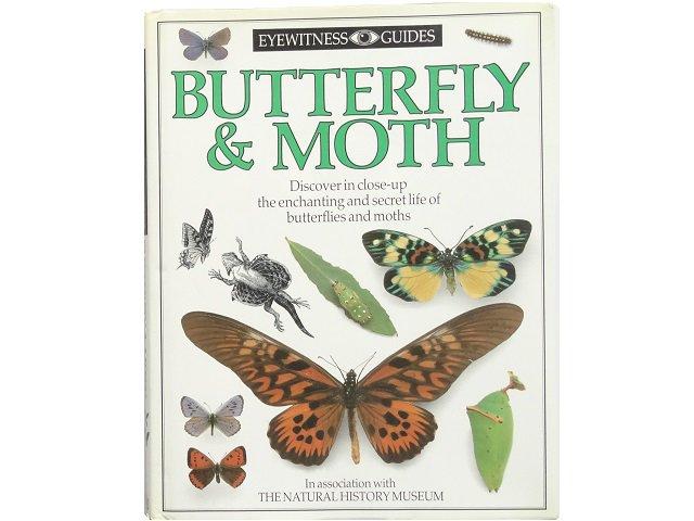 蝶と蛾の写真集