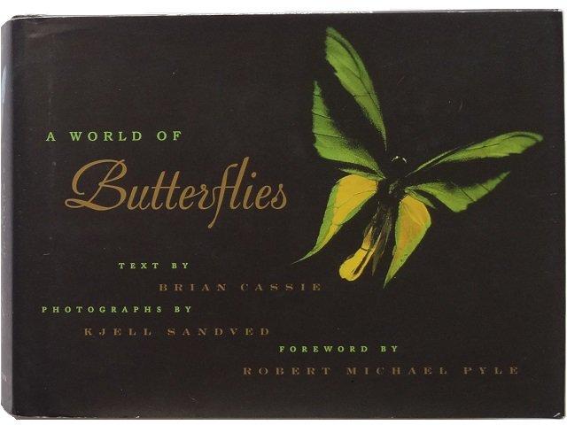 世界中の蝶の写真集