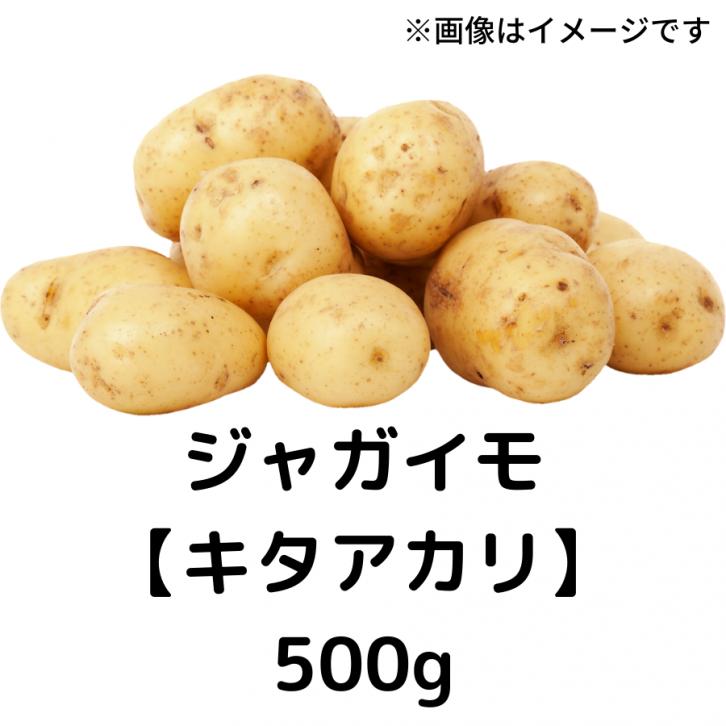 自然栽培 ジャガイモ 【キタアカリ】500g