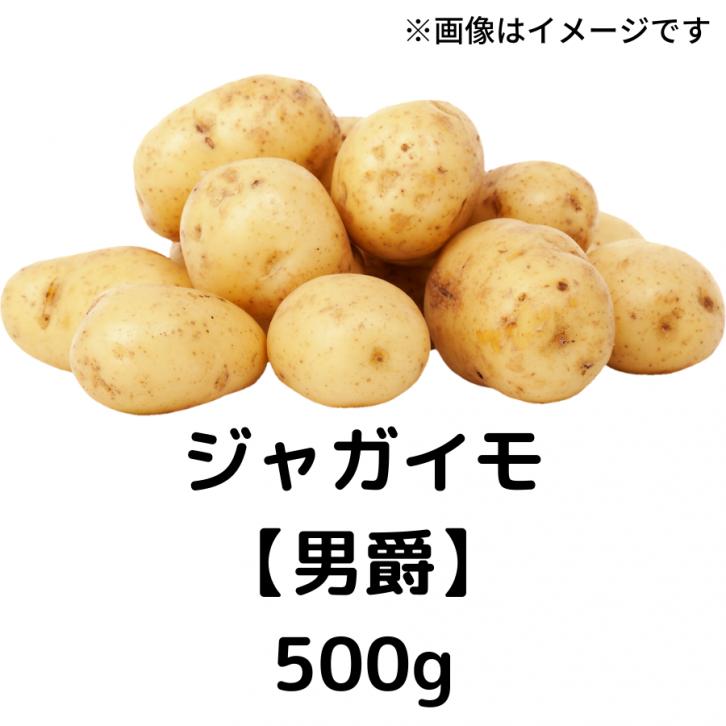 自然栽培 ジャガイモ 【男爵】500g