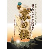 【コシヒカリ・京のきせき】玄米 1.3kg(送料無料1,000円パック)