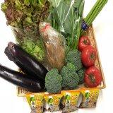産直野菜詰合せBOX