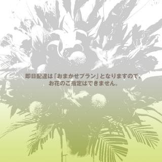 即日配達・おまかせエコノミープランのスタンド花 ep-100