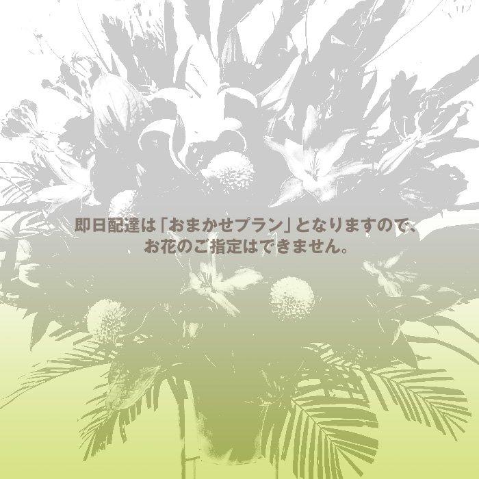 rp-100 即日配達・おまかせレギュラープランのスタンド花 - スタンド花なら勝ち花.com