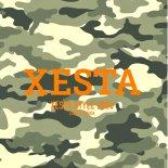 XESTAカタログ2020