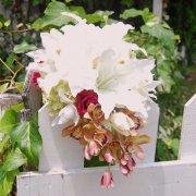 オシャレ花嫁さまと言われたい!2種のユリ+赤バラ・蘭のショートキャスケードブーケ&ブートニア