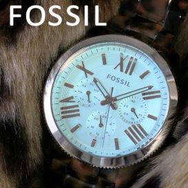 フォッシル FOSSIL クオーツ レディース 腕時計 AM4641 ライトブルー