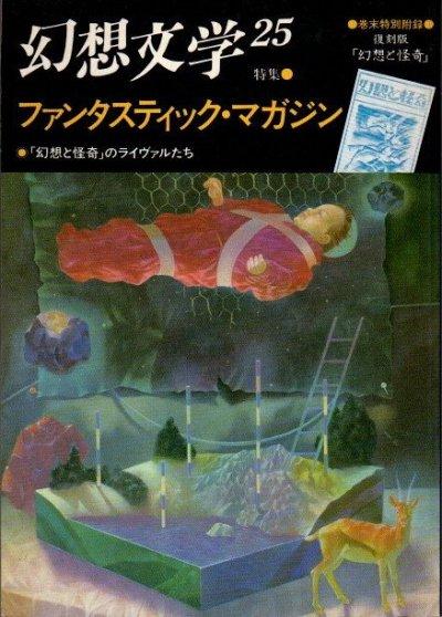幻想文学25 1989年 特集 ファンタスティック・マガジン