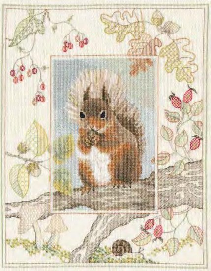 RoseSwalwell squirrel リス